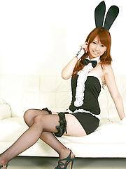 Chinatsu Sasaki Asian bunny has sexy legs in fishnet stockings