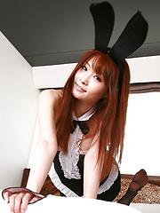 Aki Nishijima Asian is sexy bunny with ears and fishnet stockings